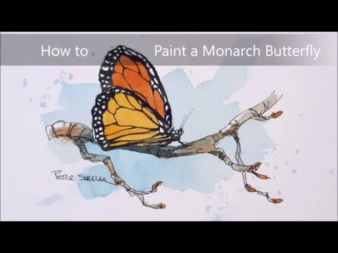 A line and wash watercolour of a Monarch Butterfly. Simple, fun and easy to follow.
