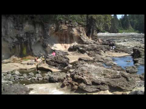 Botanical Beach - Port Renfrew, British Columbia