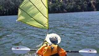 Kayak Sailing with Home made (DIY) Sail (upwind capable) - Del Valle