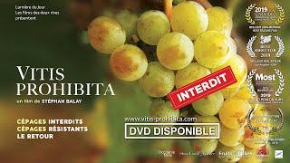 VITIS PROHIBITA - BANDE ANNONCE - sortie nationale 6 novembre 2019
