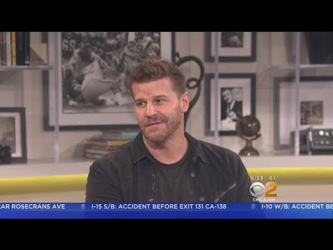 'Seal Team' Star David Boreanaz Gives P Of Season 2