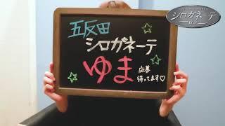 シロガネーテのお店動画