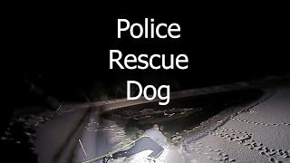 Police Rescue Dog That Fell Through Ice