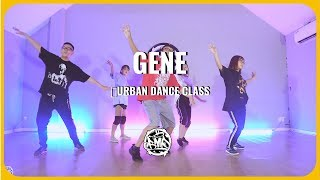 𝙂𝙀𝙉𝙀 (TOULIVER X BINZ) / K Choreography/ Urban Choreography Class (beginer)