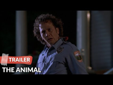 The Animal 2001   Rob Schneider  Colleen Haskell