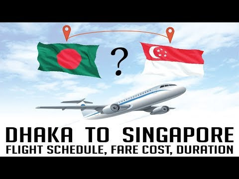 DHAKA TO SINGAPORE (Flight Schedule, Fare Cost, Duration) Travel Info