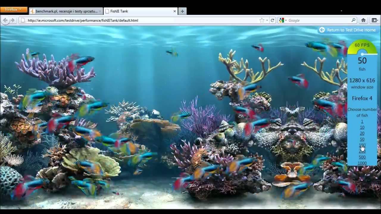 ie fish tank