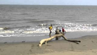playa bella vista guarare 2014