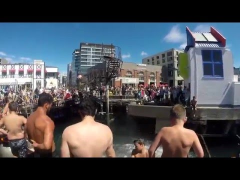 Wellington Jumping Day-Dive Bombing NZ