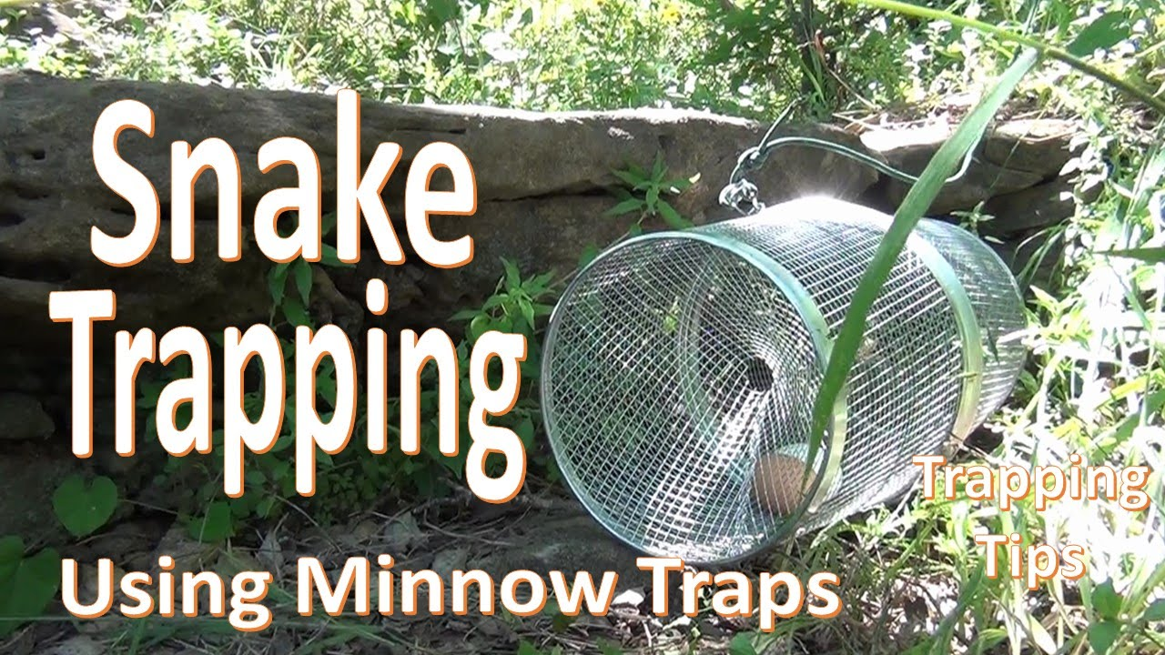 How to Trap a Snake