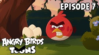 Angry Birds Toons | Just So - S2 Ep7