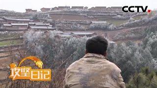《攻坚日记》 20200601 洛古有伍的心结(4)|CCTV农业
