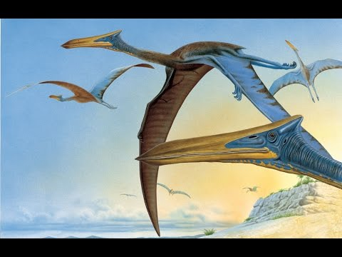 "The First Flight of ""Quetzalcoatlus"" - YouTube"