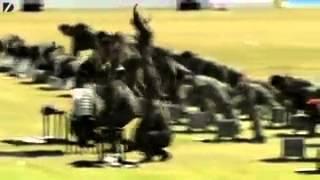 Подборка сумасшедших будней армии Северной Кореи