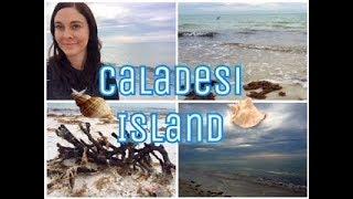 Caladesi  sland State Park
