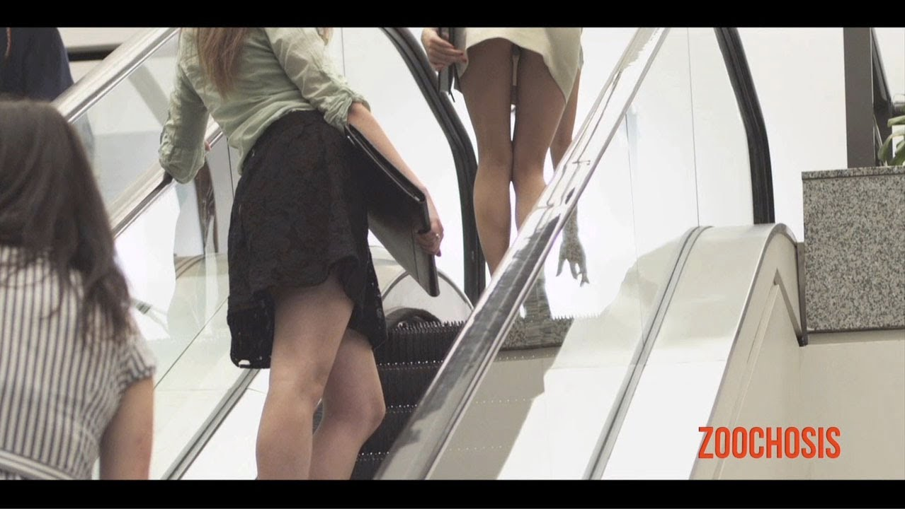 Zoochosis: Escalator #1