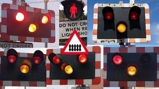 UK Level Crossings With Halogen Lights (2017)