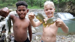 Catching Fish for Their NEW Pond at the Creek