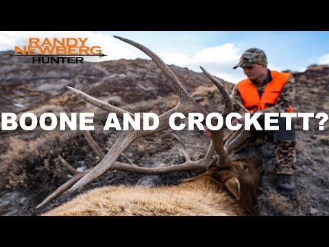 Does Size Matter?   Boone & Crockett Club Explained
