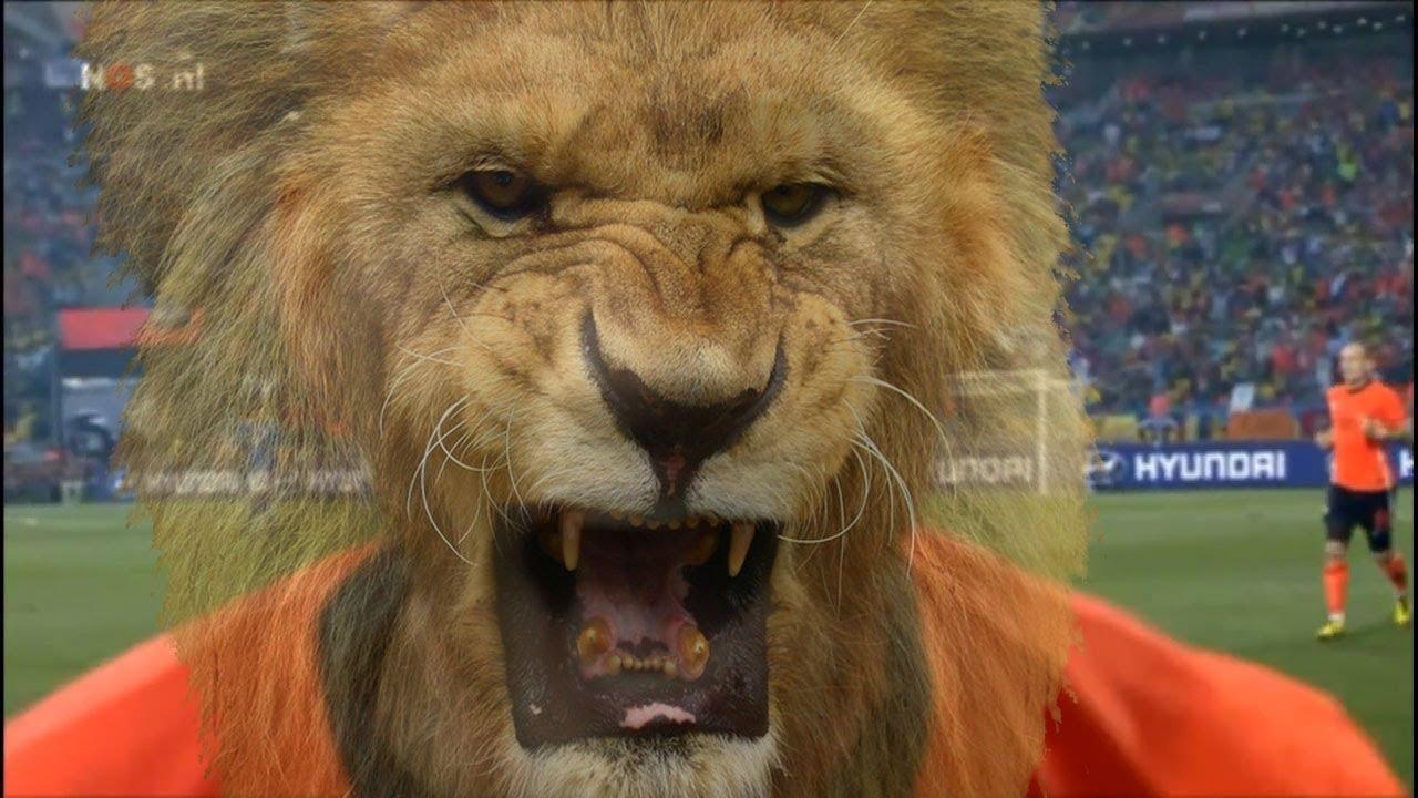 Wk Voetballied Brazili 235 2014 Quot Oranje Laat De Leeuw Los