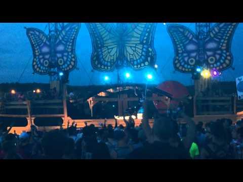 Brillz Live @ Mysteryland USA: Zedd - Clarity (Brillz Remix)
