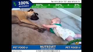 Funny dogs & NUTRIVET zdrava hrana za pse i mačke (7)