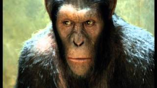 Opie & Anthony: Chimp Chipperson
