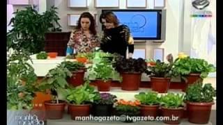 Saladinha feita em casa - versão completa