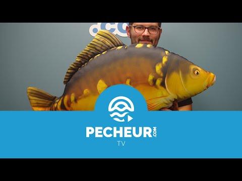 Quel matériel utiliser pour débuter la pêche de la carpe ? Tutoriel Pecheur.com