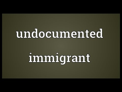 Undocumented immigrant Meaning