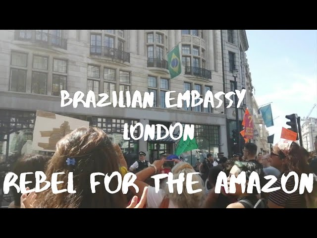 Rebel For The Amazon! London Brazilian Embassy Protest