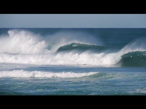 Dixon Park   Newcastle - Surfing