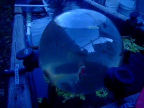 A Most Excellent Fish Pond Add A Sphere Video Youtube