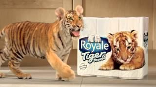 Royale Tiger (:30sec) HD - Mandarin Thumbnail