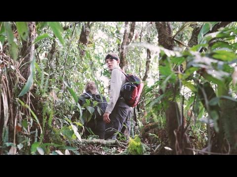 Peruvian Amazon 2016 expedition