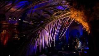 Yusuf - The Wind (Live Yusuf's Cafe 2007) + Lyrics