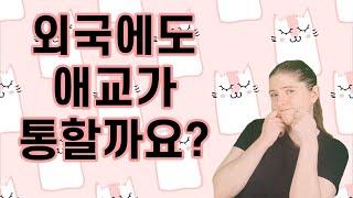 영어로 번역이 잘 안되는 한국어 단어들: 애교