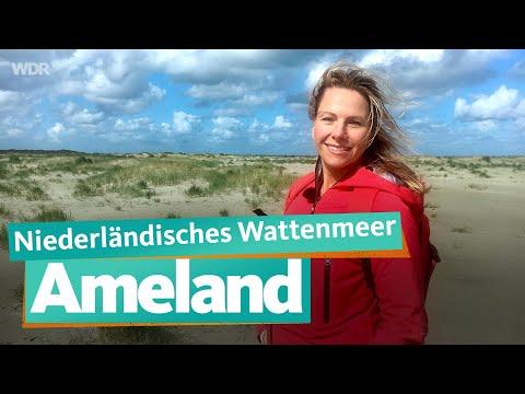 Ameland - 27 Kilometer Sandstrand | WDR Reisen