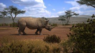 Rhino VFX breakdown
