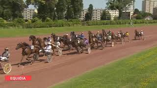 Vidéo de la course PMU PRIX DU ROUSSILLON