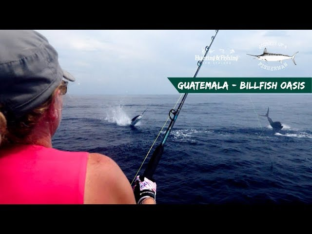 GUATEMALA - THE BILLFISH OASIS