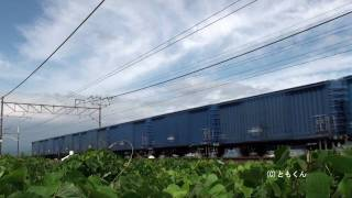 3170レ ワム80000 2009年撮影 撮影区間:近江長岡 - 穂積.