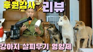 후원감사의 영상(안유민님) 강아지 살찌우기,근육량 증가 영영제 리뷰! #빠박이동물TV