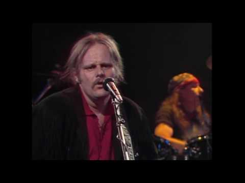 Walter Trout   In Concert SD 128  720 30