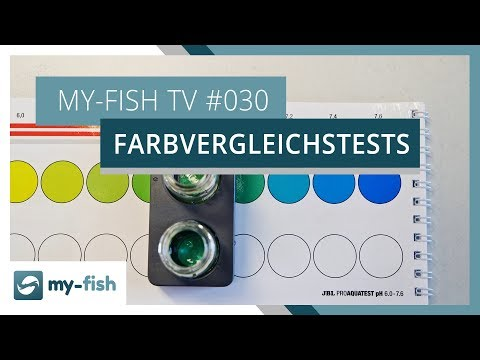 Farbvergleichstests korrekt benutzen | my-fish TV