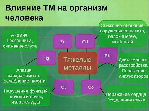 Интоксикация тяжелыми металами. Как вывести с организма: ртуть, мышьяк, цинк, кадмий, медь?