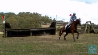 Emily Anker riding Glenwood Park Nichols & Dimes 115 Pre Novice Wandin Park Horse Trials 2013