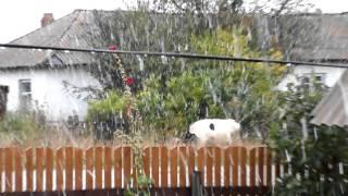 Снегопад в городе Салаире 14.09.2015