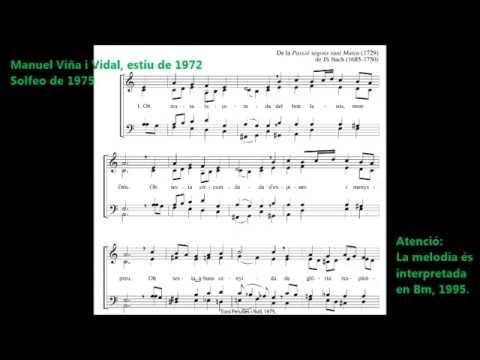 545 Oh testa lacerada Bm Toni Perulles i Rull Jesús 1972 Record
