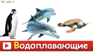 [ МОРСКИЕ ЖИВОТНЫЕ для ДЕТЕЙ ] с ГОЛОСАМИ. Развивающие ВИДЕО про морских животных для детей в HD